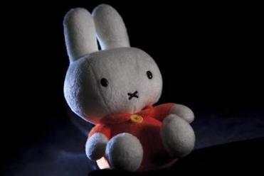 The stuffed bunny, Nijntje (called Miffy in English), is a character in a Dutch children's book.