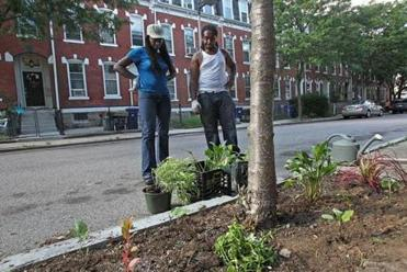 Jhana works with Donald Aaron on her goal of spreading greenery beyond the garden's fence.