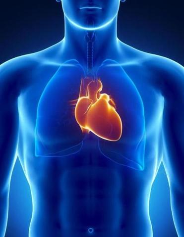"Abiomed products let the heart rest ""by improving blood flow and/or performing the pumping of the heart."""