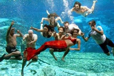 Edgers swam with a mermaid and crew in Florida.