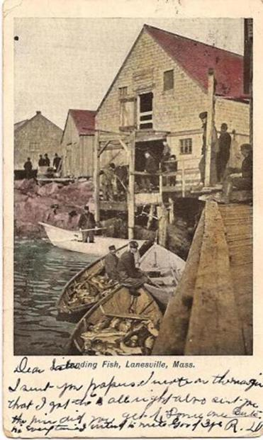A view of fishermen at work in Lane's Cove taken from a postcard mailed in 1907.