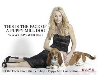 "Model Kiley Wirtz Jennings poses with Beatrice for ""Models Against Pet Shops and Puppy Mills"" campaign."