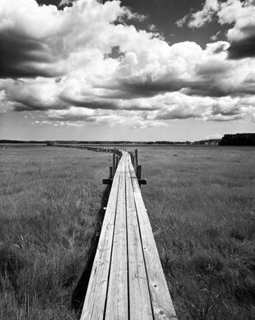 """Boardwalk and Clouds"" From ""For My Daughters"" by Dorothy Kerper Monnell."