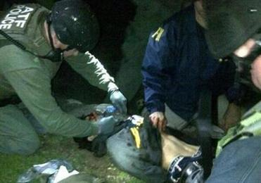 A wounded Tsarnaev was handcuffed, bringing the nightmare of a daylong manhunt to a dramatic end.
