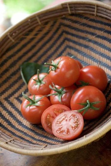 How To Grow Your Own Spaghetti Sauce The Boston Globe