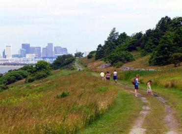 On the trail of a hilly view of Boston from  Spectacle Island.