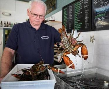 Dick Burke set aside lobsters for a phone order at Burke's Seafood in Quincy, where prices are down from as much as $12 a pound earlier this year.
