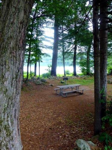 Picnic tables adjacent to the boat ramp at Tully Lake provide the shade of the forest with vistas of the lake.