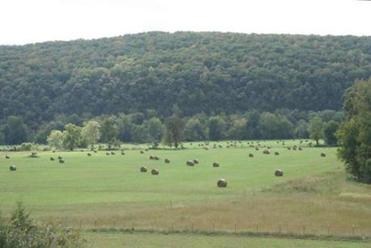 Steep forested slopes meet agricultural land in a valley just north of Cass, Arkansas.