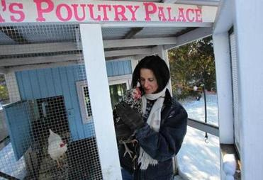 Gregory's backyard chickens produce eggs for her products.