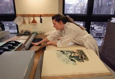 Jeanne Goodman's work involves restoring a large illustrated bird anthology that is two volumes.