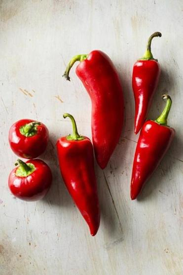TIP: in charmoula, I prefer the  slightly sweeter flavor of  relatively mild red chili  peppers such as (from left) cherry peppers, Holland  peppers, and, especially,  Fresno peppers.