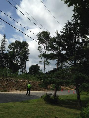 Worcester resident Anthony Maloney said workers cleared the trees that lined the front of his house, which borders on the Green Hill Golf Course.