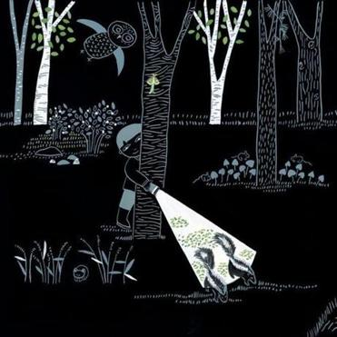 "An illustration from Lizi Boyd's ""Flashlight."""