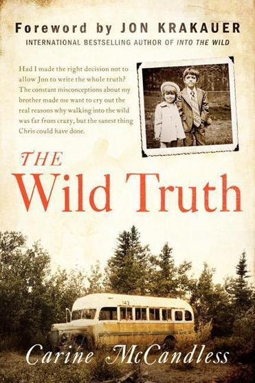 into the wild book summary sparknotes