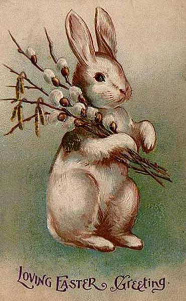 What created the easter bunny the boston globe an easter postcard from 1907 negle Choice Image