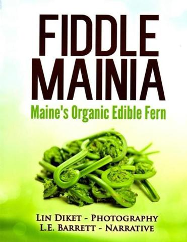 "13qanda - ""Fiddle Mainia"" by Lin Diket and L. E. Barrett. (handout)"
