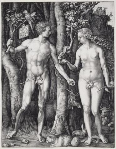 An engraving from The Strange World of Albrecht Dürer, Adam and Eve, 1504, by Albrecht Dürer from the Sterling and Francine Clark Art Institute.