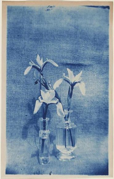 "Arthur Wesley Dow's ""Two Vases With Irises."""