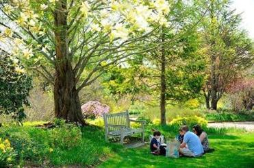 3Bring a picnic lunch to enjoy on the sweeping lawns at the Tower Hill Botanical Garden.
