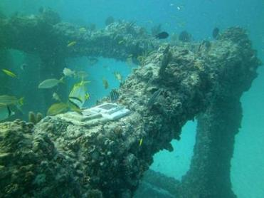 The Neptune Society's Memorial Reef, a representation of the Lost City of Atlantis located off the coast of Miami, is an underwater mausoleum for cremated remains. Families can scuba dive at the reef, a growing habitat for marine life, to visit their loved ones.