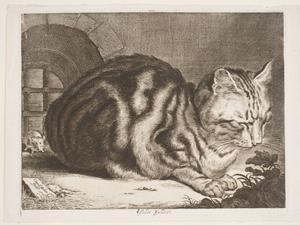 "Cornelis de Visscher's ""The Cat."""