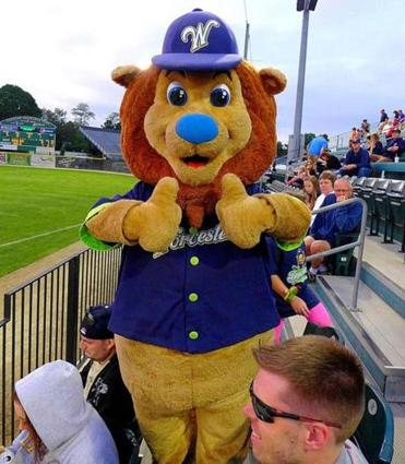 Jake the Lion is the mascot of the Worcester Bravehearts.