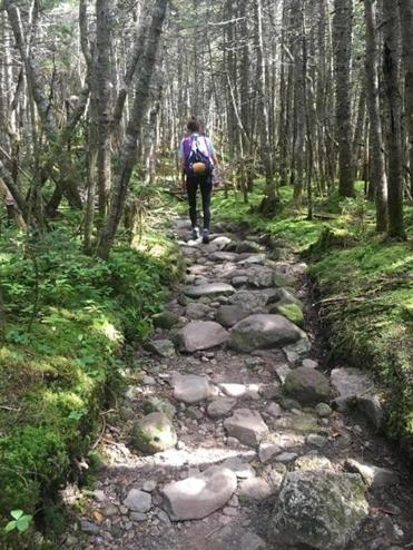 The author walks a section of Crawford Path in the White Mountains, on the way to AMC's Mizpah Spring Hut.