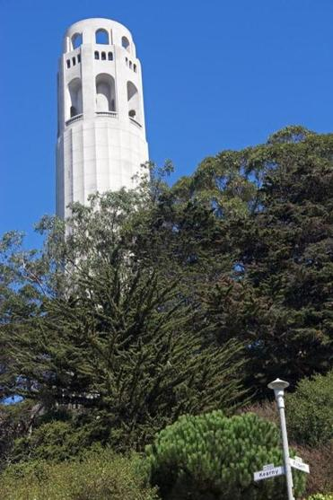 Coit Tower offers visitors a breath-taking panoramic view of the city, bay, and ocean.