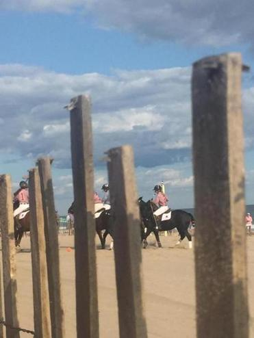 Harvard and Yale polo teams square off on the beach at Ocean House.