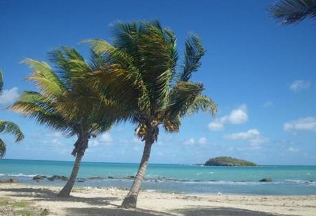 Tamarind Beach Resort St Croix The Best Beaches In World