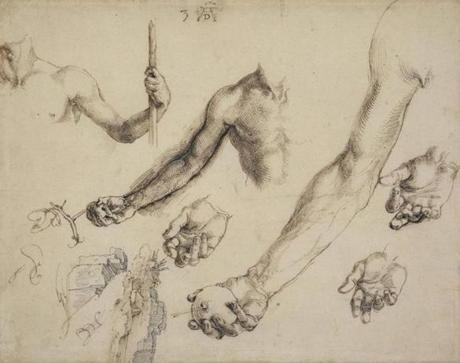 "Albrecht Durer's ""Studies for Adam and Eve.''"