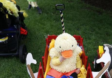 Boston, MA--5/13/2018-- 13 month old Findlay Jones of Lowell was disguised as a duckling as he hung out in a wagon and snacked on goldfish following the Duckling Day parade. (Jessica Rinaldi/Globe Staff) Topic: 14duckling Reporter: