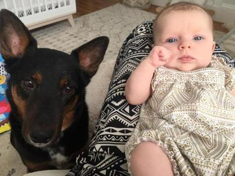The author's dog, Rio, and baby daughter.