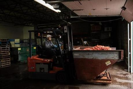 RICHMOND, MAINE - November 29, 2018: Currently, Shucks Maine Lobster is composting the shells nearby, but are making plans to use new innovation to use the lobster shells to extract additional components. (Greta Rybus for the Boston Globe)