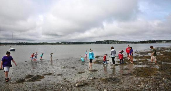 Hingham, MA--7/11/2016--Participants in Hands-On World's End, a summer camp for 5- to 11-year-olds, explore at the side beach off Martin's Cove. Activity at World's End is photographed, on Monday, July 11, 2016. There are plans to expand parking in response to increased use of the conservation land in Hingham. Photo by Pat Greenhouse/Globe Staff Topic: soworldsend Reporter: Johanna Seltz