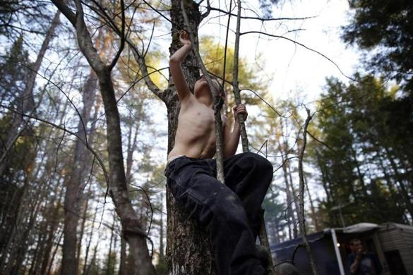Oxford, Maine -- 5/4/2015-- Strider reached up to grab high on a sapling revealing a scar that snaked its way up his stomach and the dimple that marked the place where a feeding tube had once been as he climbed a tree in the first of several campgrounds that would come to be home throughout the course of the summer. Jessica Rinaldi/Globe Staff Topic: 31strider Reporter: