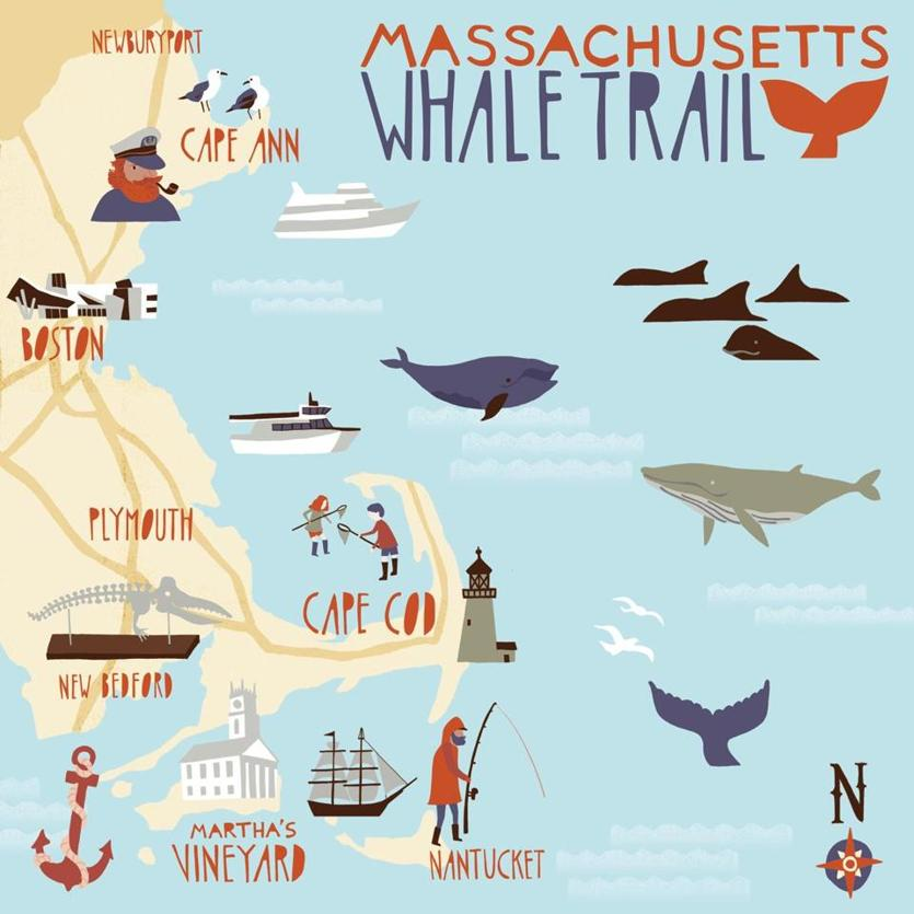 24WhaleTrail -- (Massachusetts Office of Travel and Tourism)
