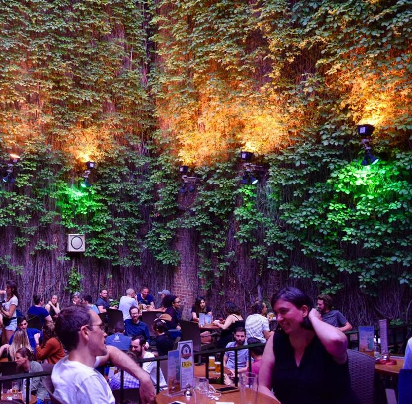 The courtyard of Le Sainte-Elisabeth pub in Montreal is an ivy-covered oasis
