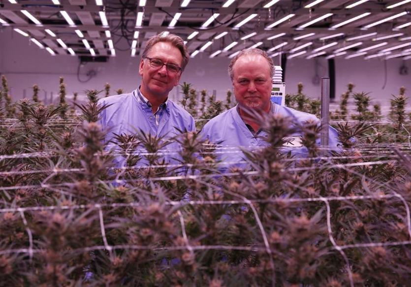 Fitchburg, MA--6/18/2018-- Revolutionary Clinics CMO Tom Schneider (L) and CEO Keith Cooper pose for a portrait inside a flowering room at Revolutionary Clinics marijuana cultivation facility. (Jessica Rinaldi/Globe Staff) Topic: potcroppic Reporter: