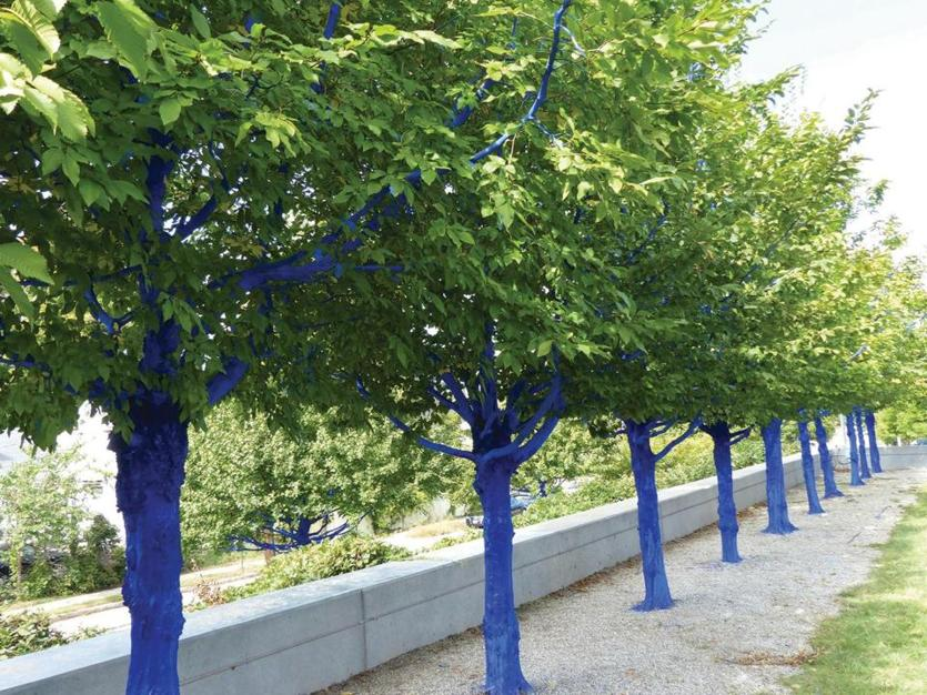 "Konstantin Dimopoulos's ""The Blue Trees"" at the Currier Museum of Art in Manchester, N.H."
