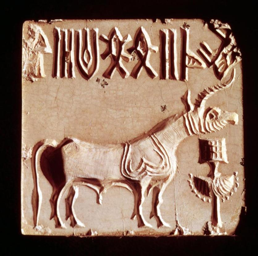 A stone seal depicting a mythological animal and pictographic symbols from Mohenjo-Daro, one of the Indus Valley cities. The Harappan language has only been partly and tentatively deciphered.