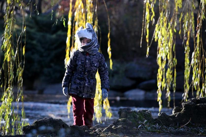 A visitor to the Public Garden in Boston was bundled up Thursday.