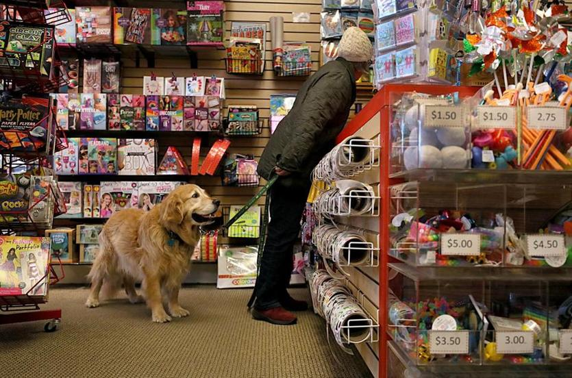 "Jamaica Plain, MA., 12/12/2018, Deborah Brooks always brings her golden retriever, Dewey to the toy store to shop. Amid the downfall of Toys ""R"" Us and the mindbending growth of Amazon, the toy retail scene is morphing before our very eyes. The local toy shop Boing in JP is offering home delivery and curbside pickup to compete with Amazon. Suzanne Kreiter/Globe staff"