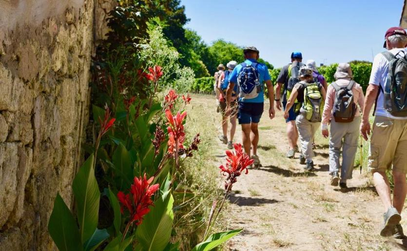Hikers from the MS Cyrano de Bergerac make their way in Pauillac, France
