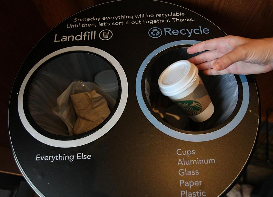 Starbucks Tackles Paper Cup Tiger The Boston Globe