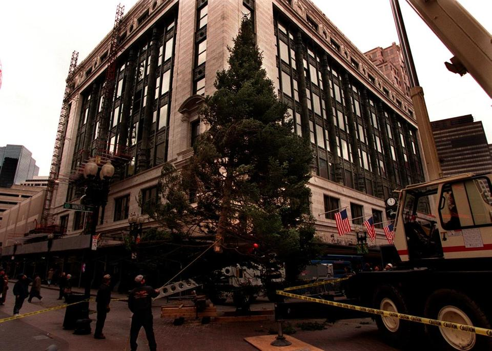 Boston...11/8/98...Christmas tree is raised into place at Filene's in Downtown Crossing. 11departmentstore