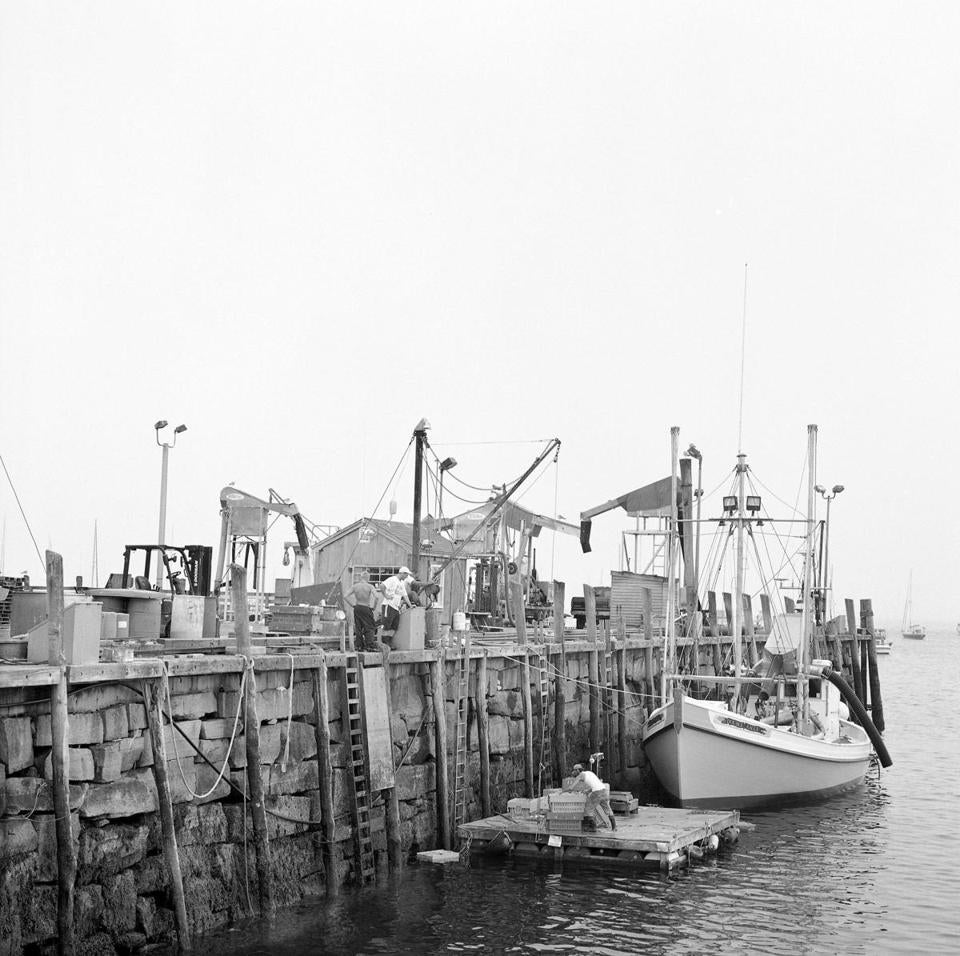 Commercial fishing and lobstering are big business on Rockland's waterfront.