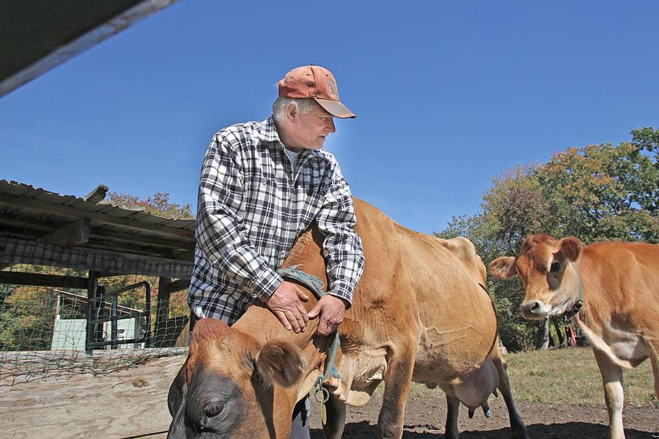 Doug Stephan bought his 114-acre farm in Framingham about a decade ago. He has a herd of more than 200 cows.