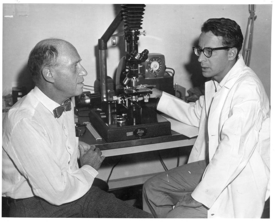Leonard Lerman (right) with Ted Puck, chairman of the biophysics department at the University of Colorado, in the 1950s, an active time for DNA research.